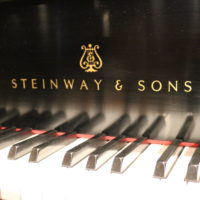 Steinway & Sons Fallboard Logo